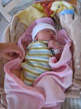 Lilla V - 1 dag gammal