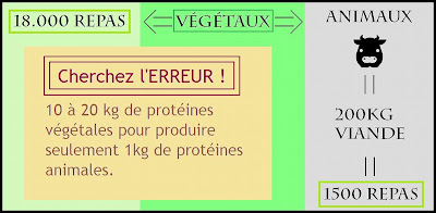 plante carnivore vegan