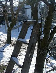 Neve na Aldeia - Janeiro 2009