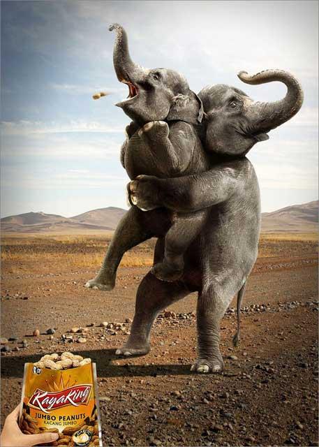funny-ads19-elephant-jumbo-peanut