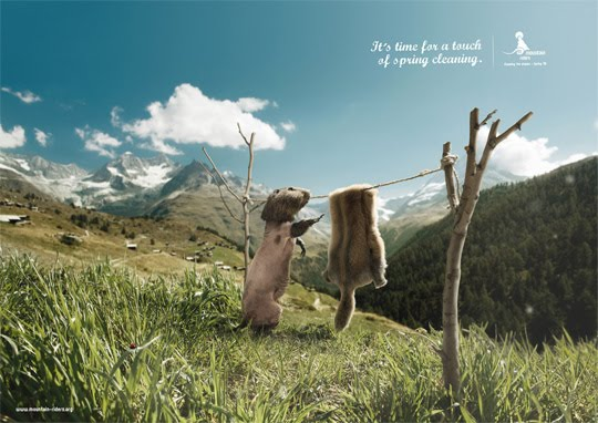 Mountain-Riders-Its-time-for-as-spring-cleaning-funny-ad38