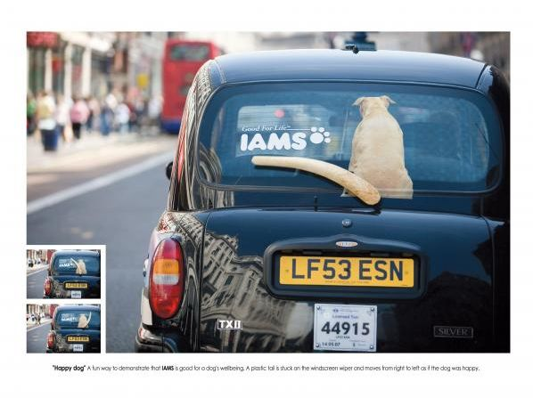 Iams-pet-food-print-ad2
