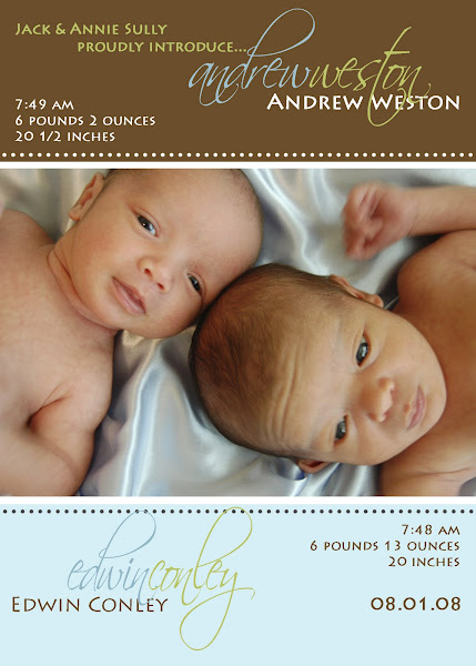 Andrew &amp; Edwin Baby Announcement - Twins