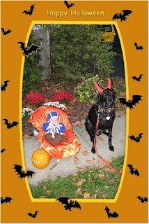 I know, Diesel is wearing the same costume as last year