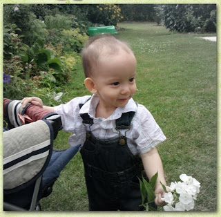 Baby's new dress - trouser and shirt in our garden