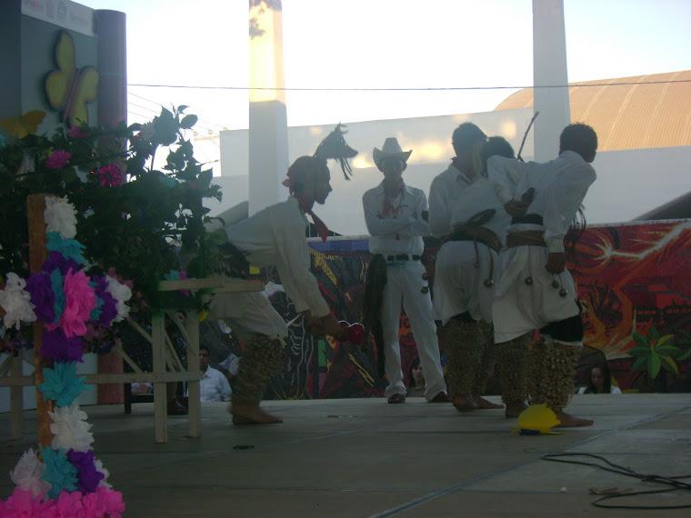Danza del venado versión indígenas mayos