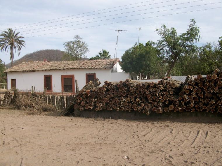 Vivienda rural con madera de brasil