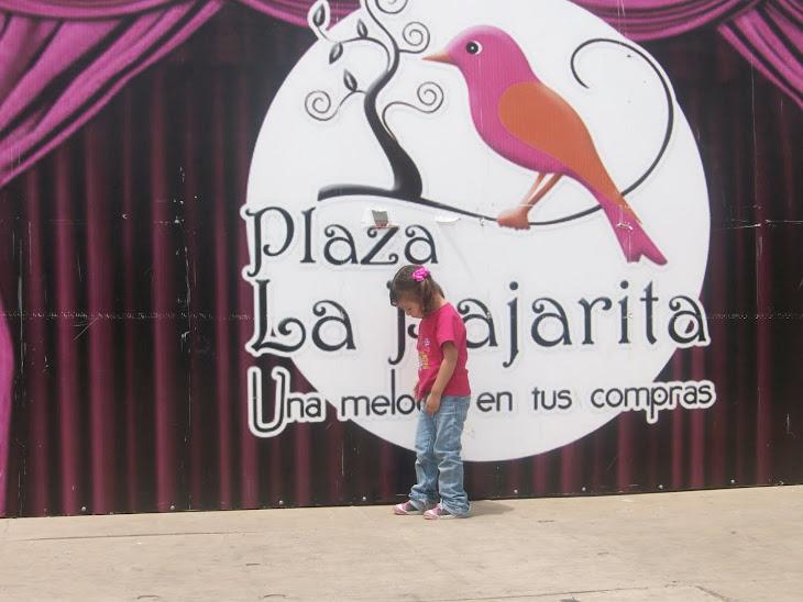 Dana Isabela en Plaza La Pajarita de Tijuana