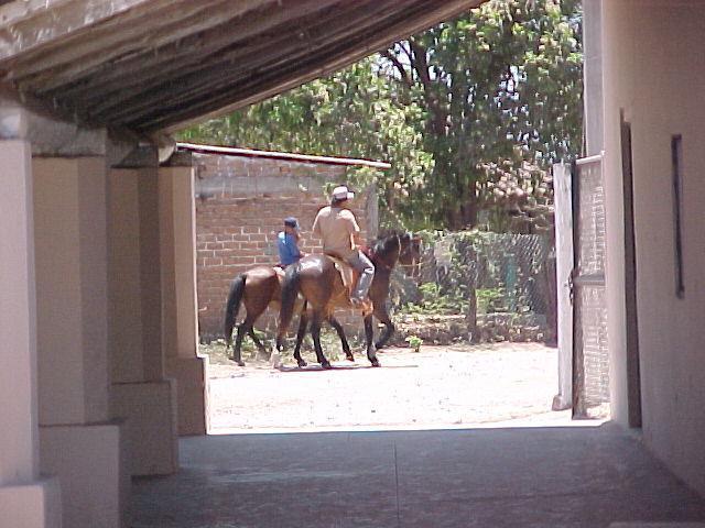 Vaqueros culiacanenses en su rutina diaria