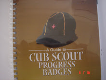 A Guide To Cub scout Progress Badge Tests