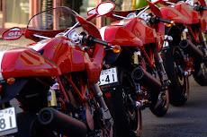 Ducati sports 1000S Yanagimoto  3