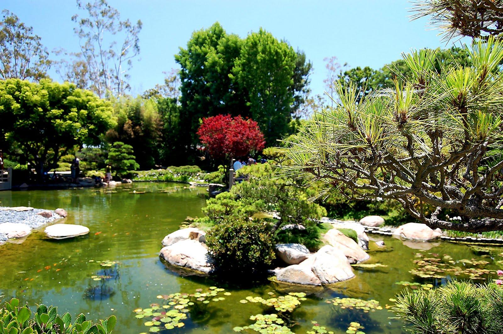 Recollections Of A Vagabonde A Tour Of The Japanese Garden In Long Beach California
