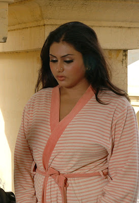 ... namitha wallpaper, sexy celebrity, sexy namitha gallery