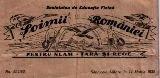 Soimii Romaniei din Sannicolau Mare