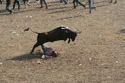 Bullfight in Columbia