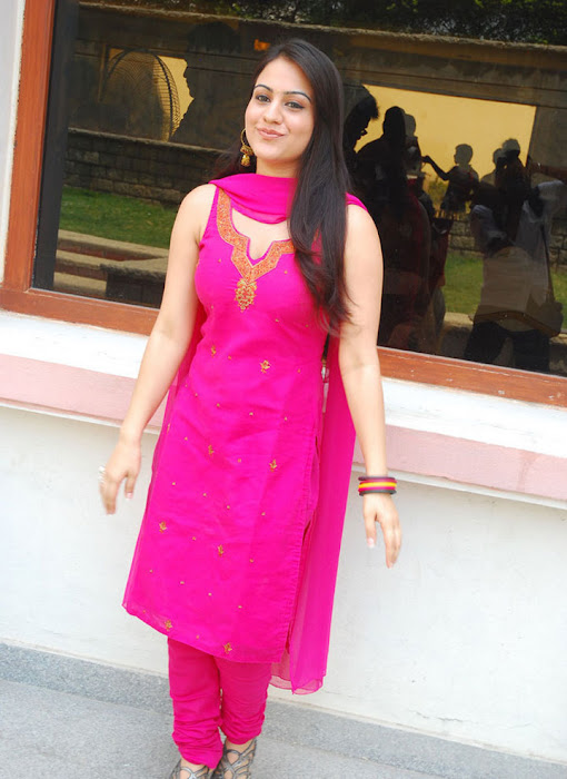 aksha in test pink dress aksha smooth lips actress pics