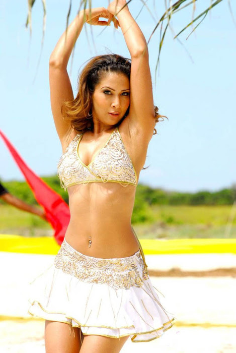 kim sharma bikini bollywood kim sharma sweet hand armpits kim sharma lovely small dress up hot images