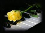 * Bấm trên bản nhạc, bản nhạc mở rộng
