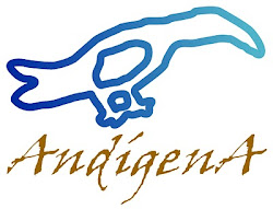 Fundación AndígenA-Venezuela