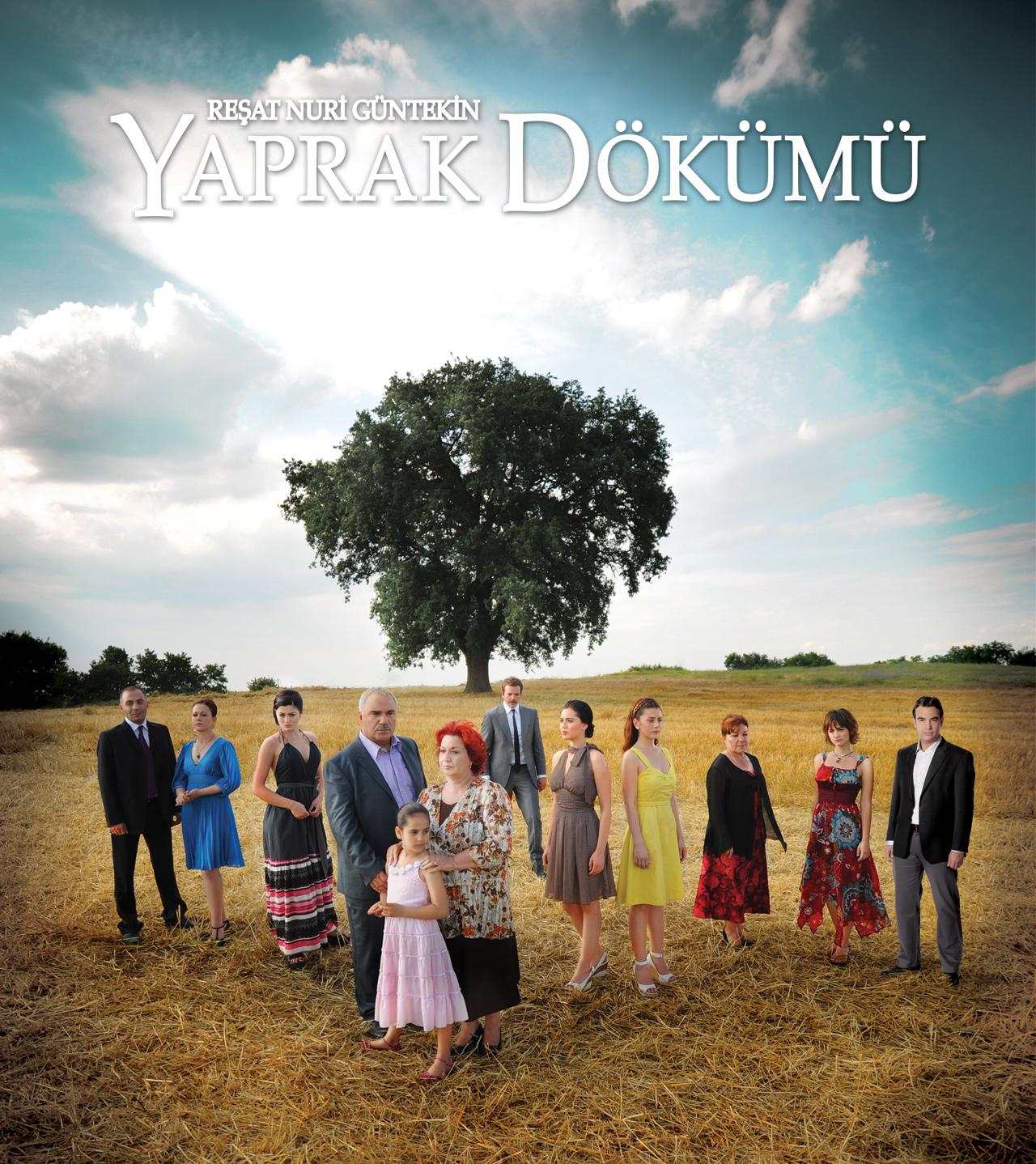 http://4.bp.blogspot.com/_mFgbt7Y3hY8/TPhLr3MKwSI/AAAAAAAAAAk/GRxotXnj_qM/s1600/yaprak+dokumu.jpg