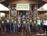 Sumatra&#39;s anti-deforestation activists