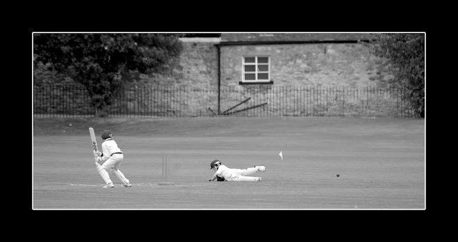 cricket, oxford