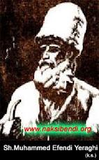 Mawlana Syaikh Muhammad Efendi Yaraghi q.
