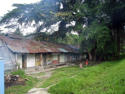 Hidden wodden houses