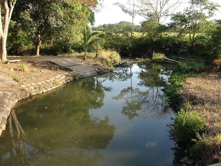 Las ricas aguas de la Quebrada Curpa