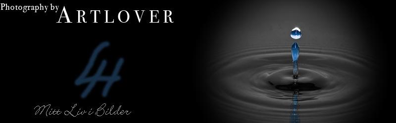 Artlover
