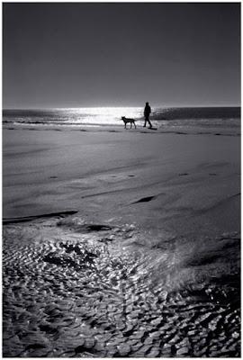 Walking close to the sea