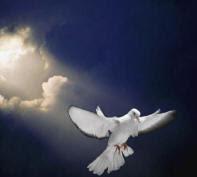 http://4.bp.blogspot.com/_mUO3EFIUF28/S1nOhriau8I/AAAAAAAAAJQ/PSNKAqTnMF8/s320/roh_kudus.jpg
