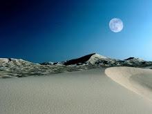 Las estrellas del desierto