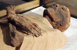எகிப்து மம்மிகள் உருவான காரணம் _26051_Egypt_mummy