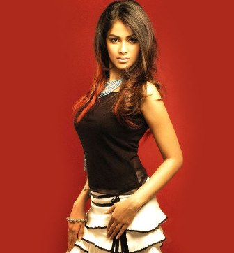 genelia-d-souza-hot-wallpaper5.jpg (336×362)