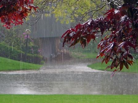 http://4.bp.blogspot.com/_mYaYzUwbBiQ/TChOunqfmTI/AAAAAAAABrk/pueyl4_btd0/s1600/Rain_Beautiful_Wallpapers_Pics1.jpg