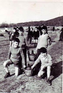 Niños con las damajuanas un día del Hornazo en Candelario Salamanca
