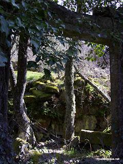 Candelario Salamanca ruinas de la fabrica de papel el Barquillo ruinas