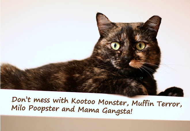 Don't mess with Kootoo Monster, Muffin & Milo!
