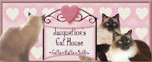 Jacquelines Cat House