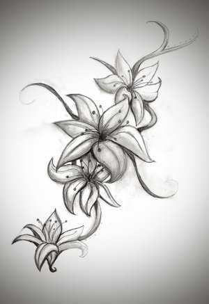 Lily Flower Tattoo drawing