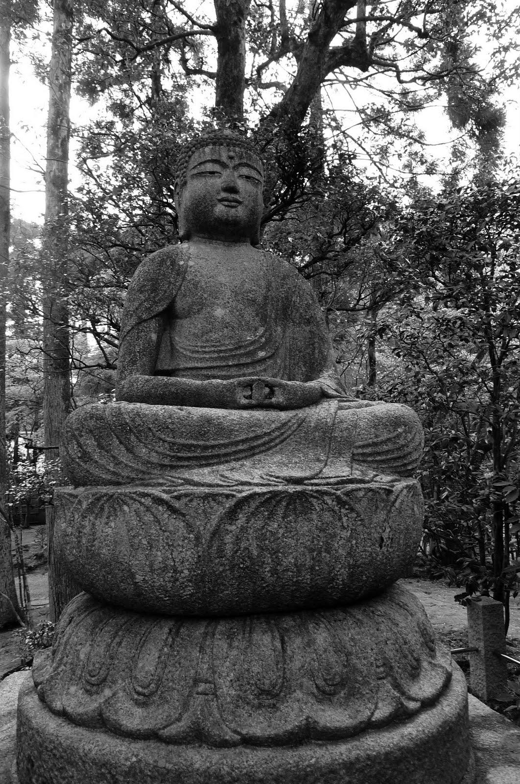 Equatorial zen garden - Rateau jardin zen ...