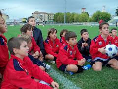 Pulcini 2001