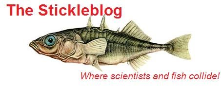 The Stickleblog