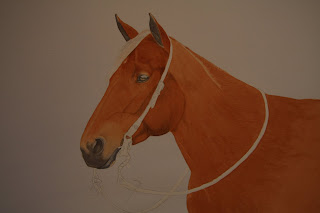 Watercolor Horse Portrait Commission