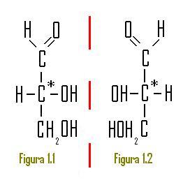 hidratos de carbono quimica: