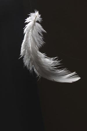 kertas putih yang hanya kutulis dengan cerita tentangmu dan sayapsayap