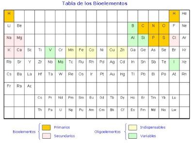 la imagen siguiente muestra dentro de la tabla peridica cules son estos elementos y algunas caractersticas significativas respecto a ellos - Tabla Periodica Y Sus Caracteristicas