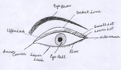 Nourishing beauty eye structure for eye makeup eye structure for eye makeup ccuart Image collections