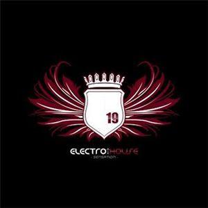 Electronic House Sensation Vol. 19